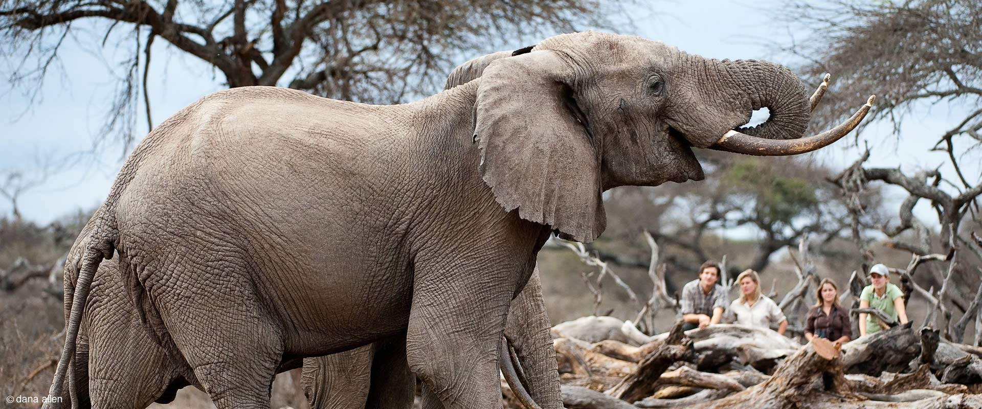 about-africa-geographic-travel