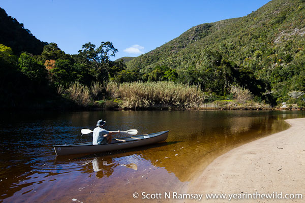 keurbooms-river-nature-reserve