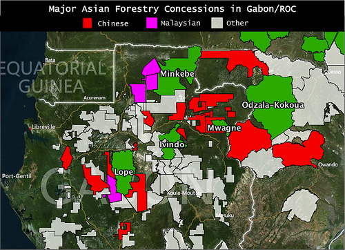Chinese logging concessions mapped next to national parks in Gabon and Republic of Congo – high risk for poaching.