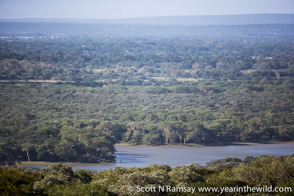 The view of Nyamithi Pan from the viewing tower near the entrance gate to Ndumo.