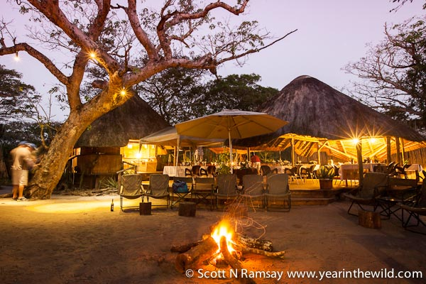 The laid-back Tembe Lodge is great for families or couples who don't want to pay the earth for an authentic wildlife experience.