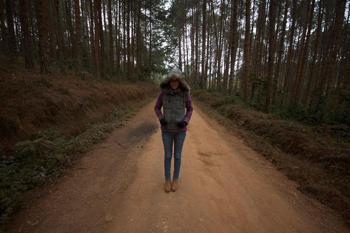 Zomba-Walk