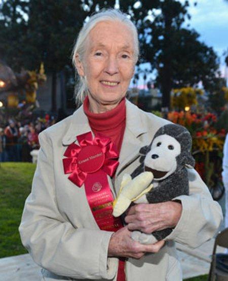 Primatologist Dr Jane Goodall ©AFP