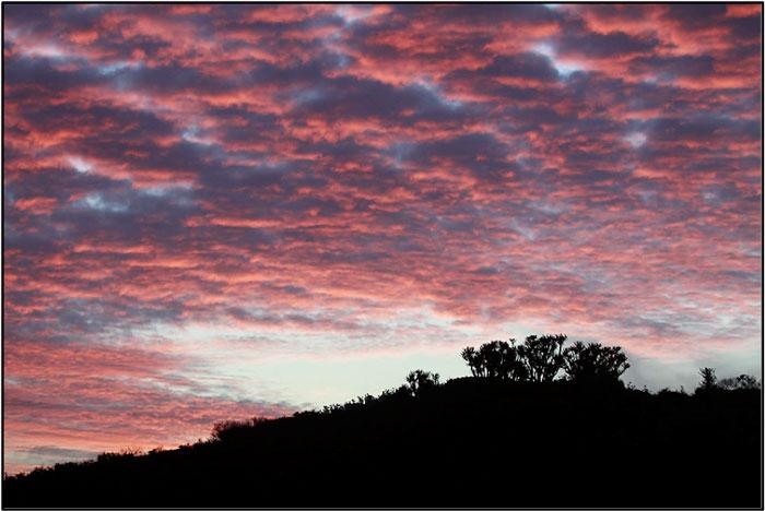 Dramatic sunset skies at Kariega GR. ©Kevin McDonald