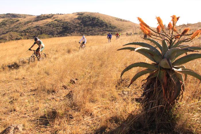 Lubombo-mountains-mountain-bike--iSimangaliso