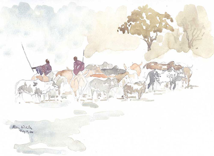 © Maasai and Cattle, watercolor field sketch. Sketching this herd of cattle allows me to decide how much detail is necessary to depict an entire herd.
