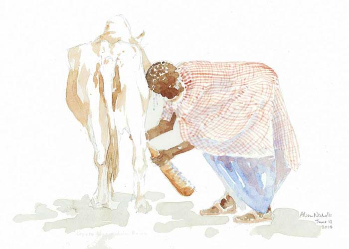 "Milking Time Field Sketch                                11x14"" pencil & watercolor by Alison Nicholls"