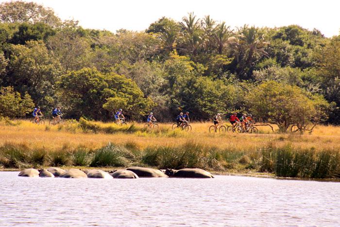 hippo-cyclists-iSimangaliso