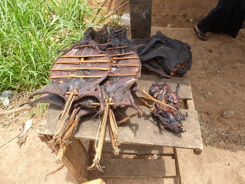 On the roadside in Ghana, bushmeat such as cane rat, giant pouched rat, and red-flanked duiker are on sale. Photo courtesy of Wikiseal under a Attribution-ShareAlike 3.0 Unported (CC BY-SA 3.0) creative commons license.