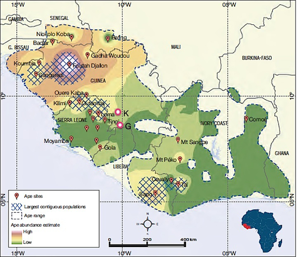 The early outbreak towns of Guéckédou (G) and Kissidougou (K) are near chimpanzee habitat. Courtesy, State of the Apes, Arcus Foundation.