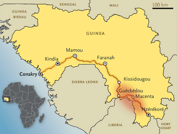 The main road connecting Conakry with Guéckédou borders important western chimpanzee habitat. Could an ape trafficker infected with Ebola have sparked off the outbreak? The red patch is the initial outbreak area. Courtesy of New England Journal of Medicine