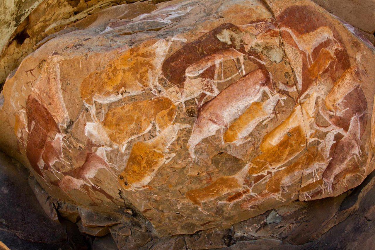 drakensberg bushman paintings