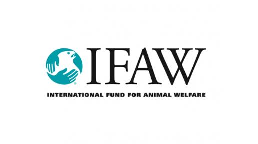 IFAW BAR