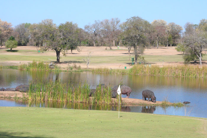 The Skukuza golf course within Kruger