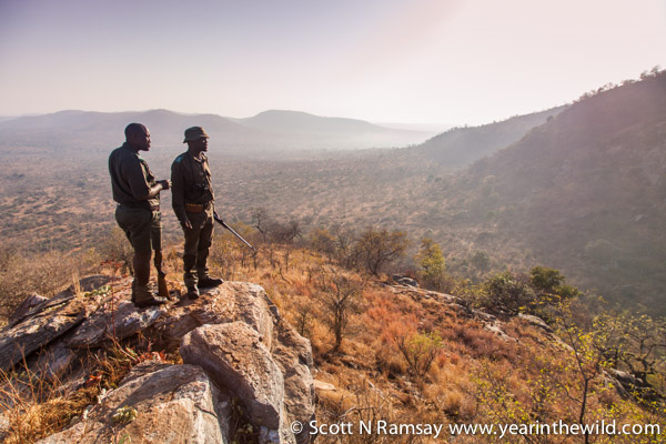 The early morning walks at Berg en Dal are great. The scenery is among the best in Kruger for walking. Here guides Rasta Nkuna and Peter Zitha take in the views.