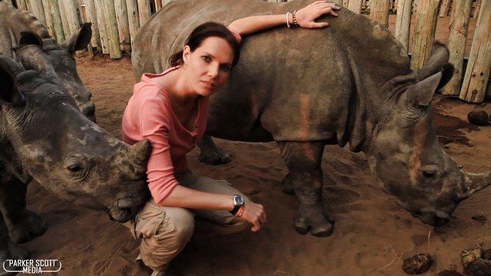 injured-rhino