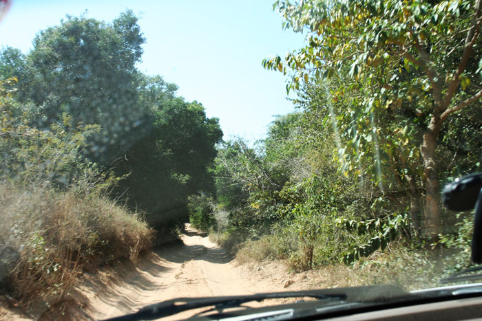 mozambique-roads