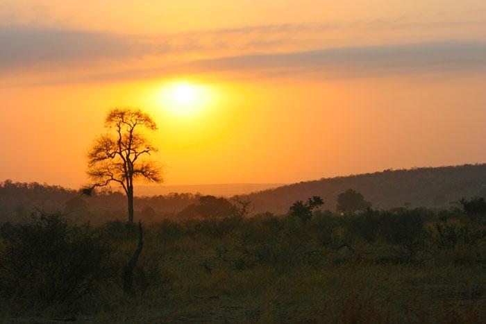 A special Kruger sunrise