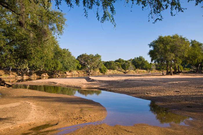 Molema-limpopo-river-landscape