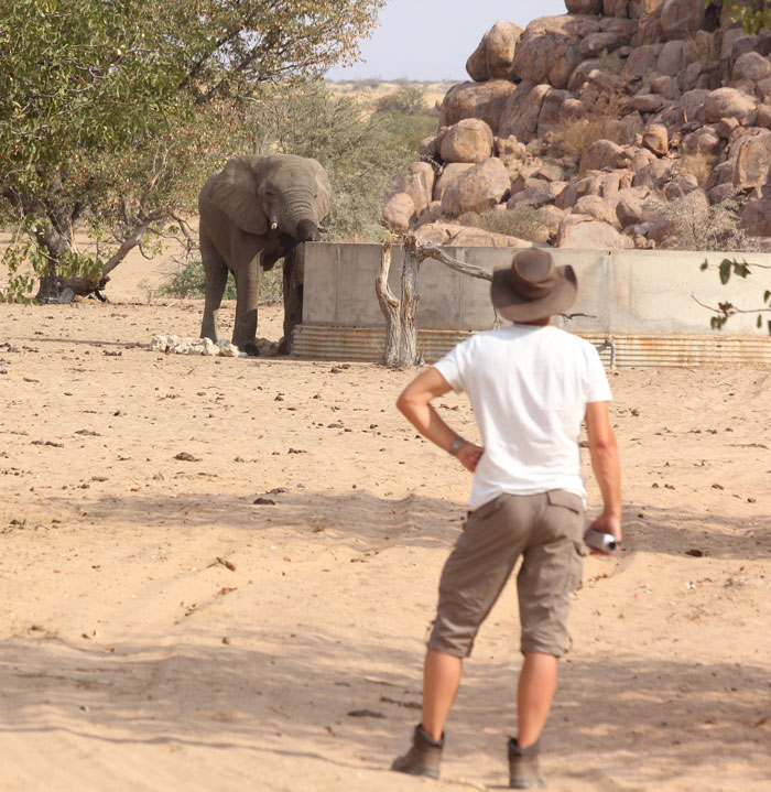 A tourist privileged to see a free-ranging elephant in Sorris-Sorris Conservancy.