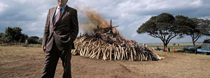 Richard Leakey in front of burning ivory in Nairobi National Park, Kenya, July 18, 1989. Jonathan & Angela Scott/Balance/Photoshot/ZUMA