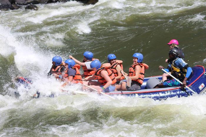 rapids-zambezi