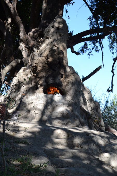 termite-mound-pizza