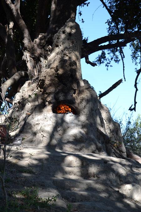 termite-mound-pizza