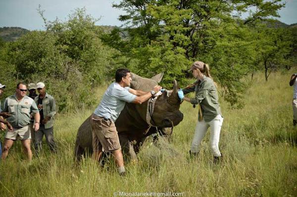 Lorinda in South Africa. © Miona Janeke.