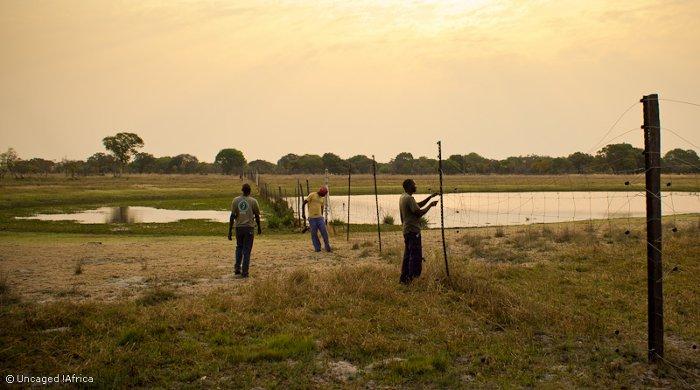 Liuwa-Plain-National-Park-African-Parks-boma