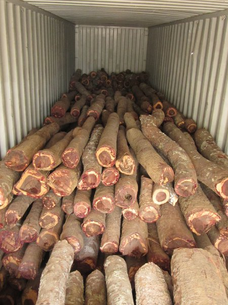 Truck-Trees-Timber