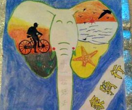 cycling-for-elephants-china-270x224