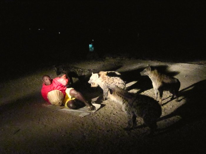 Why hyenas are lovely - Africa Geographic