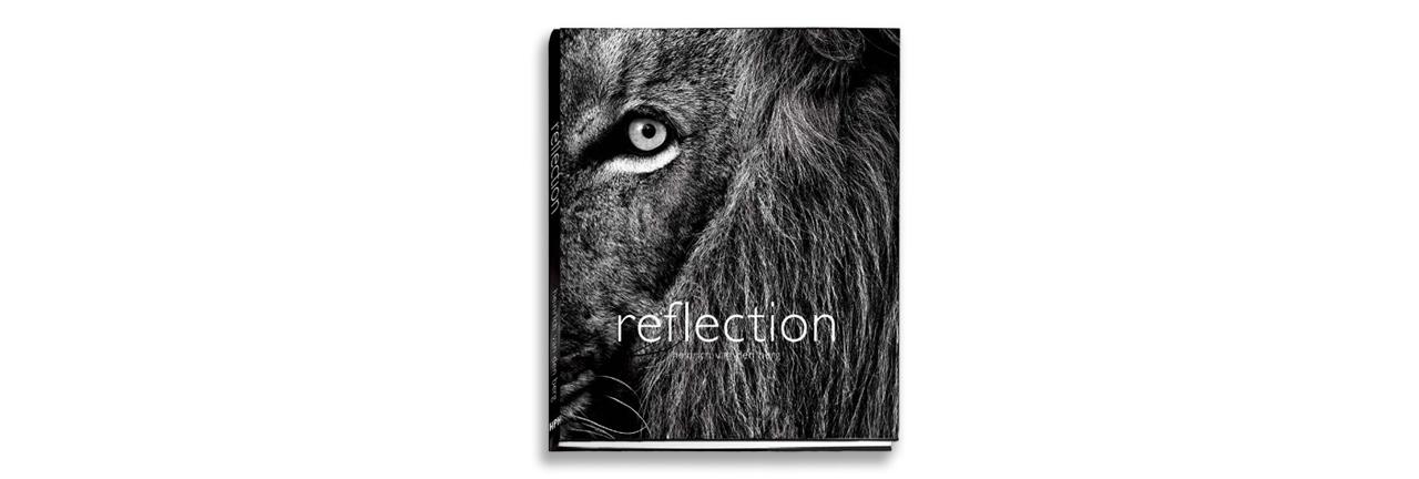 reflection-2