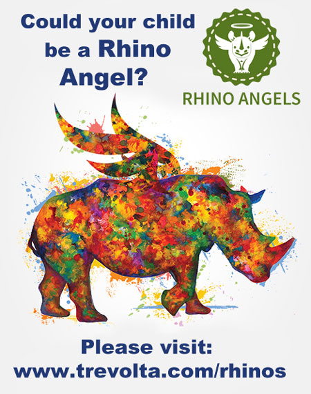 rhino_angel