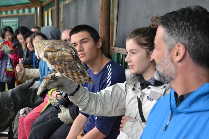 eagle-encounters
