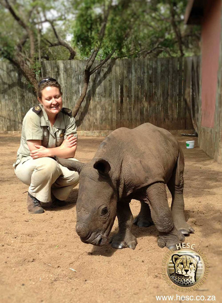 orphan-baby-rhino-rescue