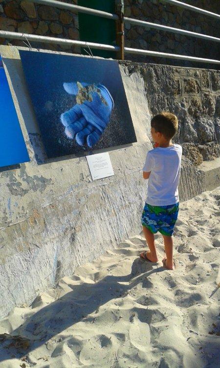 Child-shark-photograph-Save-Our-Seas