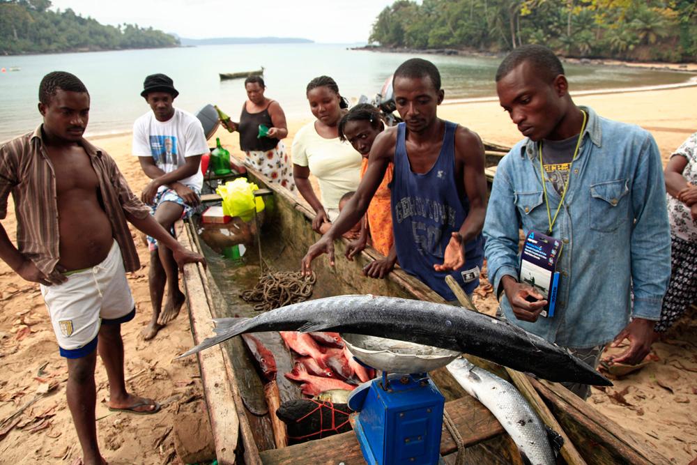 sao-tome-fishermen-catch-jeremy-jowell_0562