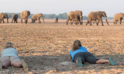 south-luangwa-africa-geographic-travel