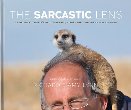 the-Sarcastic-lens