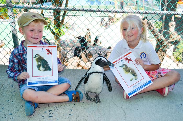Children-adopt-penguin