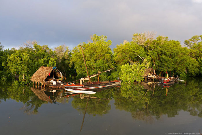 Lamu Island Houses