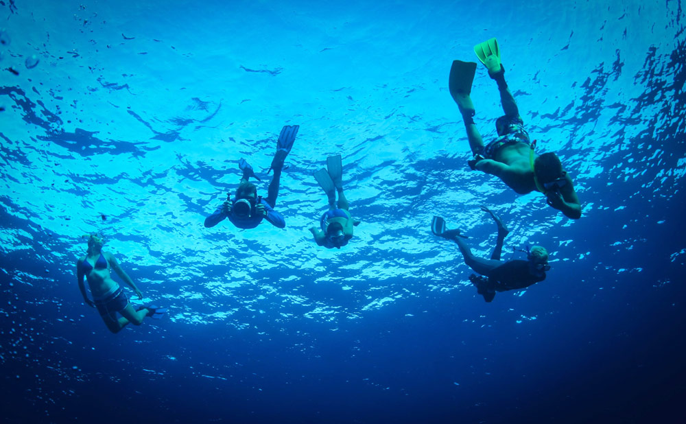 East-african-coral-reef-diving--3