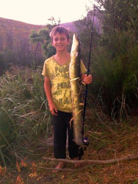 A happy young angler with an adult longfin eel caught in the Witte River, Bainskloof