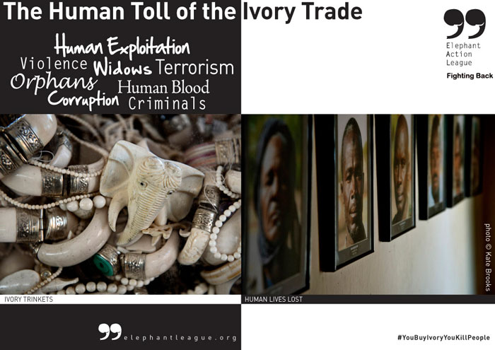 Ivory Trade Campaign