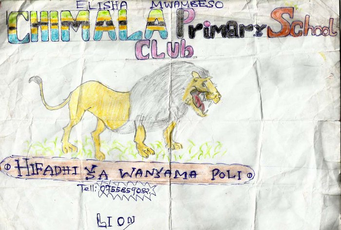 The logo of our wildlife conservation club: a lion drawn by one of the students of the club.