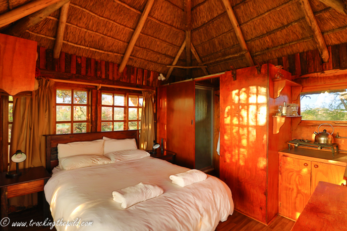 Mokala National Park Kameeldoring Treehouse Bedroom