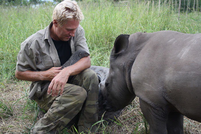 rhino rehabilitation