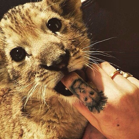 Cara delevingne poses with a lion cub for tag heuer for Lion and cub tattoo